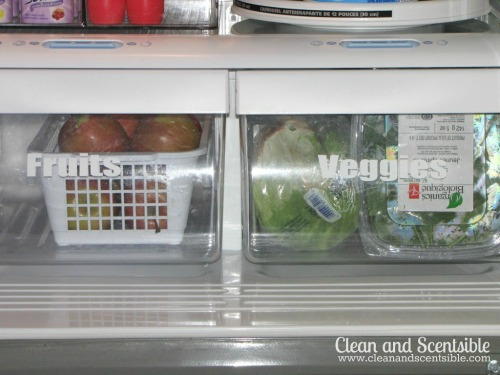 Lots of tips and tricks to help organize your fridge and freezer!