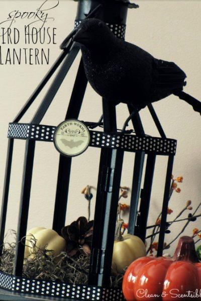 Halloween bird house made from an old outdoor lantern.