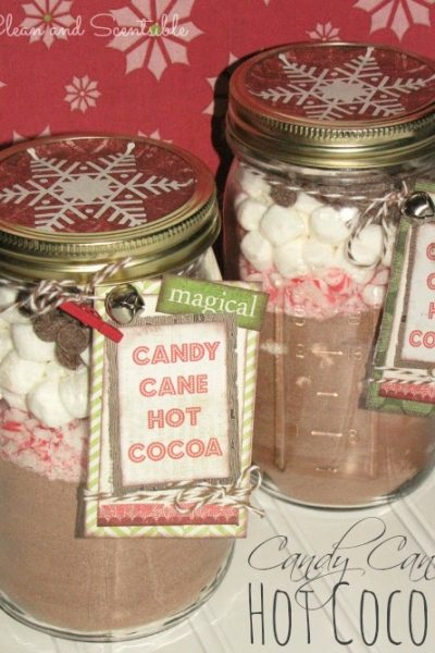 Candy Cane Hot Cocoa in mason jars. Such a cute Christmas gift idea!
