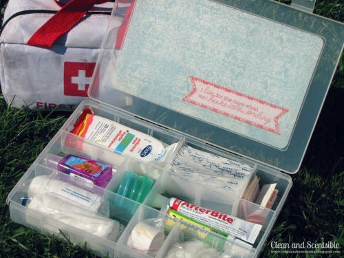 Tips and tricks for organizing your car.