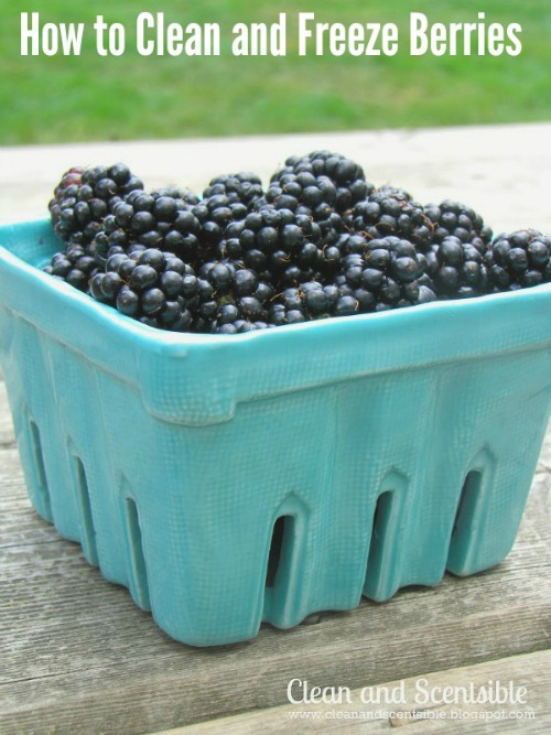 Great tips on how to clean and freeze berries. // cleanandscentsible.com
