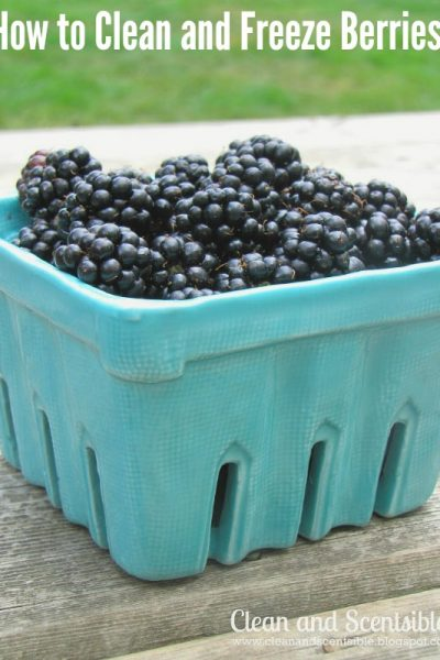 How to Clean and Freeze Berries