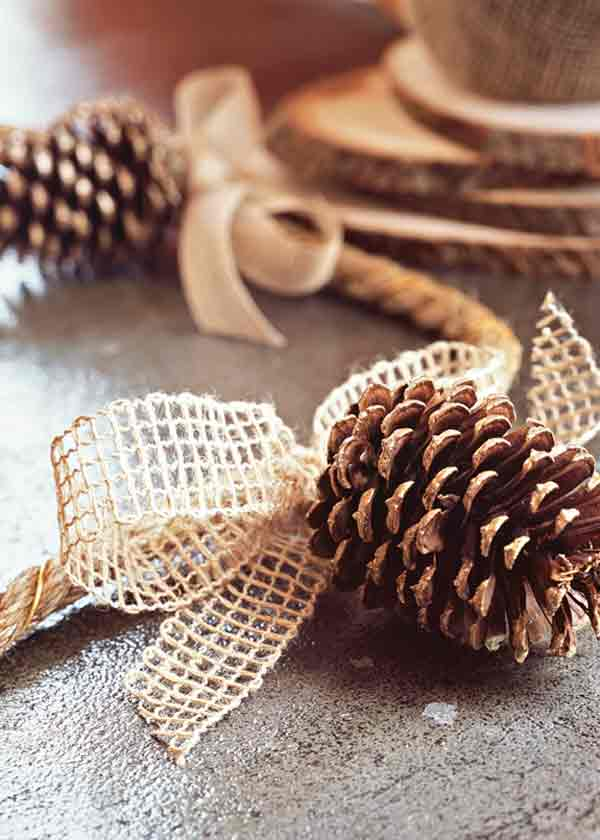 Pine cone garland g