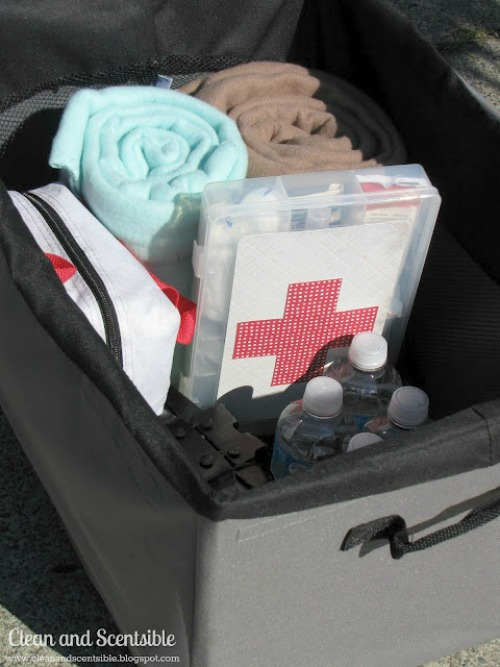 Top Organization Projects of 2012: How to organize your car.