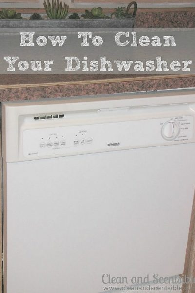 How to Clean your Dishwasher {from Top Cleaning Posts from 2013}