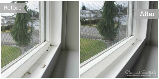 Steam clean window tracks for a great clean quickly and easily!