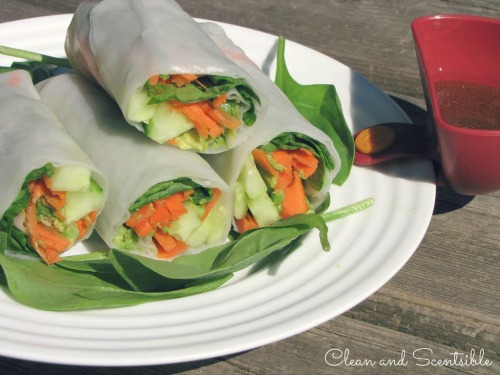 Avocado rolls with peanut dipping sauce.  Tasty AND healthy!
