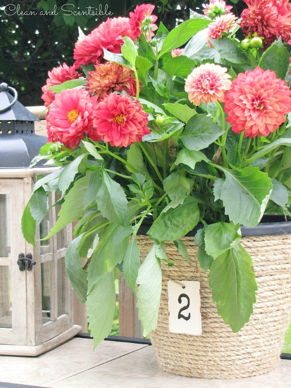 Sisal Rope Flower Pots - Clean and Scentsible