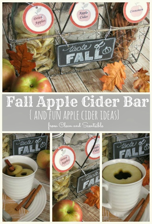Fall Apple Cider bar.