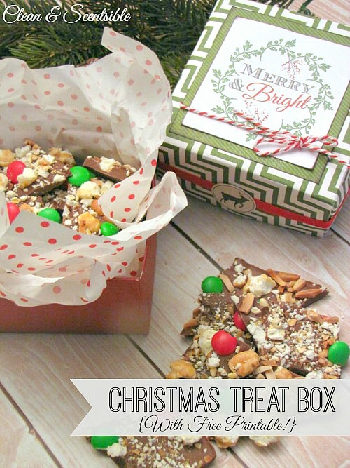 Christmas treat box with free printable clean and scentsible for Homemade baked goods for christmas gifts