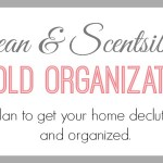 The Household Organization Diet Slider