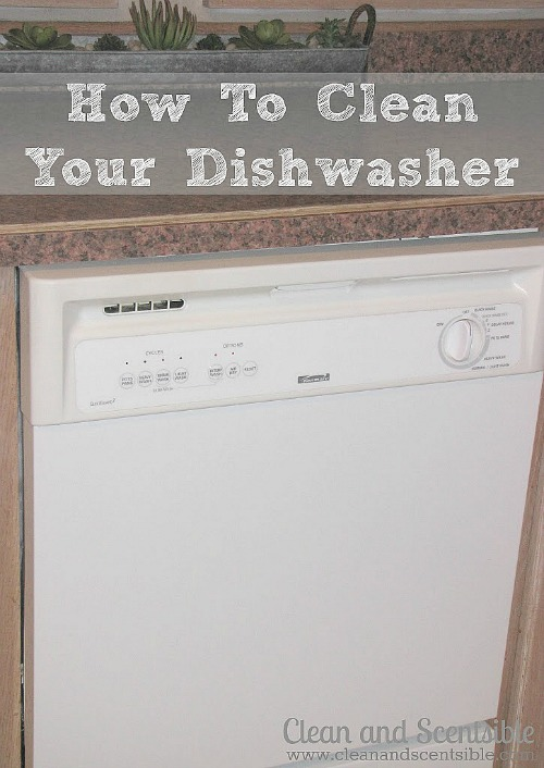 Tutorial on how to clean your dishwasher.