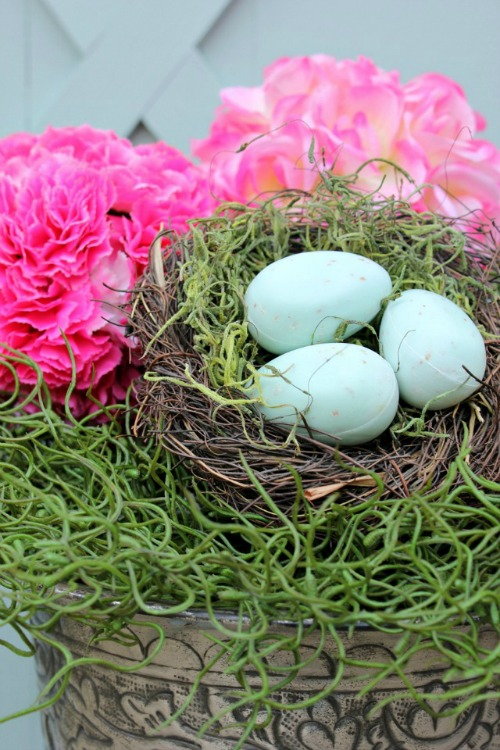 Lots of great project ideas for Spring!