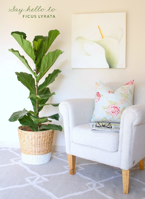Great DIY home decor projects!