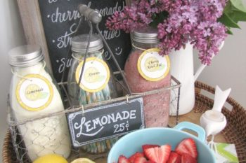 Mini Lemonade Bar