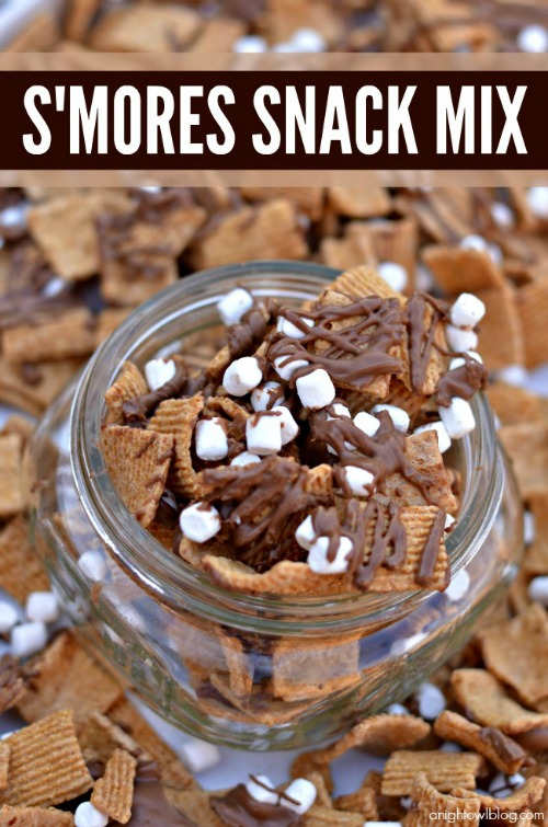 Love all of these yummy s'mores inspired food ideas!