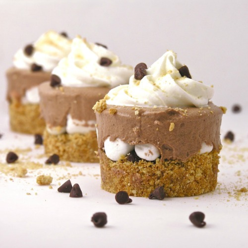 Tons of mouth watering s'mores recipes!