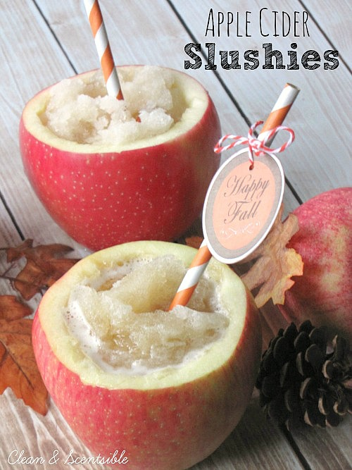 Apple Cider Slushies - such a full and tasty fall treat! // cleanandscentsible.com