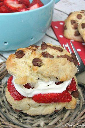Chocolate Chip Strawberry Shortcake Recipe