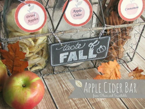 Apple Cider Mini Bar.  // cleanandscentsible.com