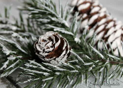 How to Clean Pine Cones pics