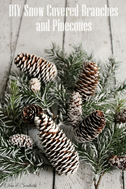 Diy Snow Covered Branches And Pine Cones Clean And Scentsible