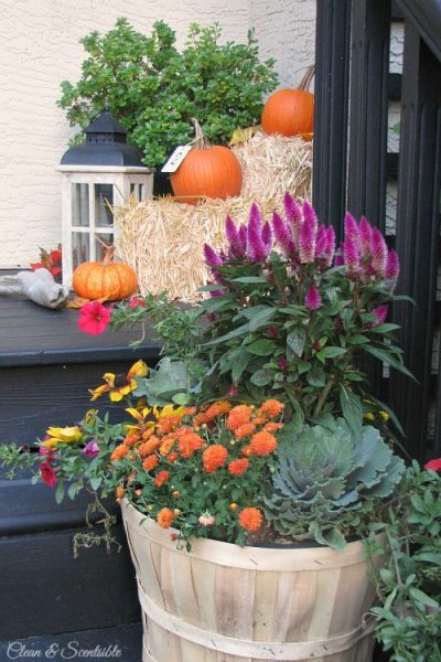 Easy ideas to help you decorate your fall front porch. // cleanandscentsible.com