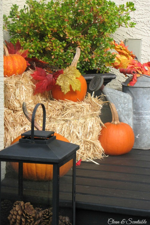 Easy fall front porch ideas.  // cleanandscentsible.com