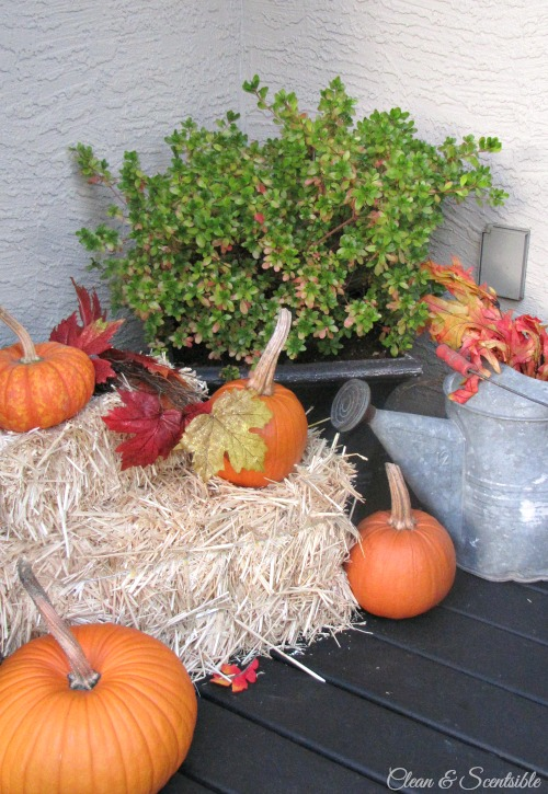 Easy ideas to decorate your fall front porch! // cleanandscentsible.com