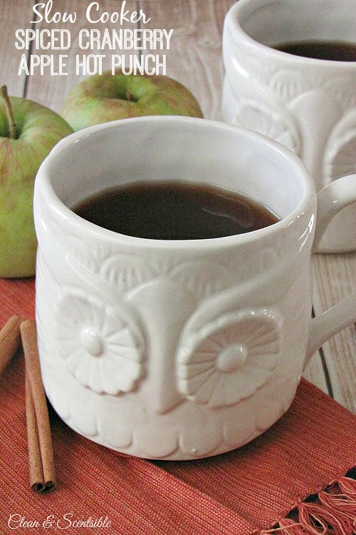 This spiced cranberry apple hot punch is made in the slow cooker for the perfect fall drink! // cleanandscentsible.com