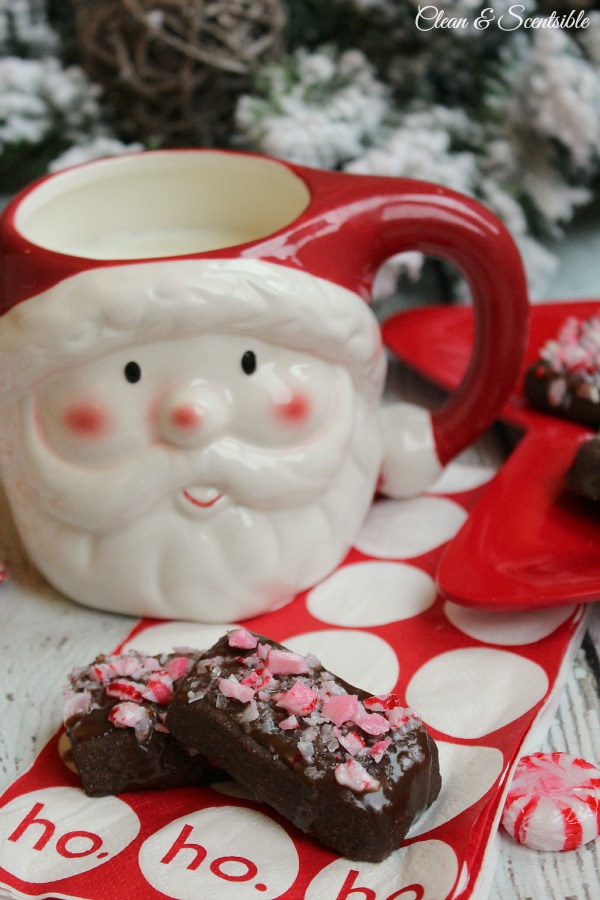 Peppermint Bites and Hot Cocoa are perfect for a Christmas Evening! Featured on Design DazzlePeppermint Bites and Hot Cocoa are perfect for a Christmas Evening! Featured on Design Dazzle