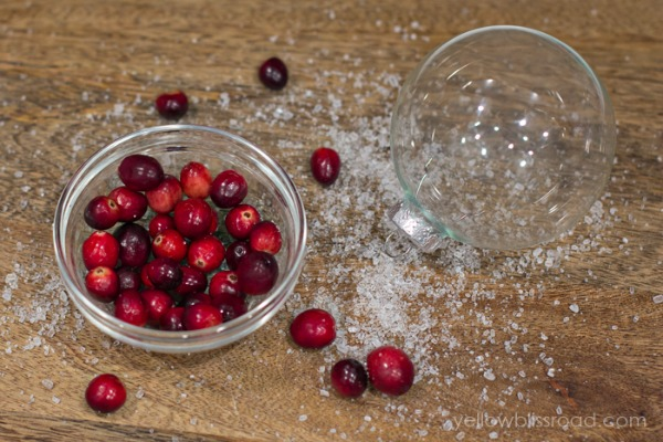 Simple Frosted Cranberry ornaments.  So pretty!