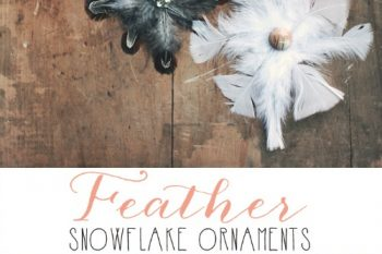 Feather Snowflakes