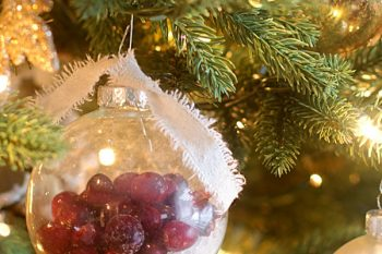 Snowy Cranberry Ornaments