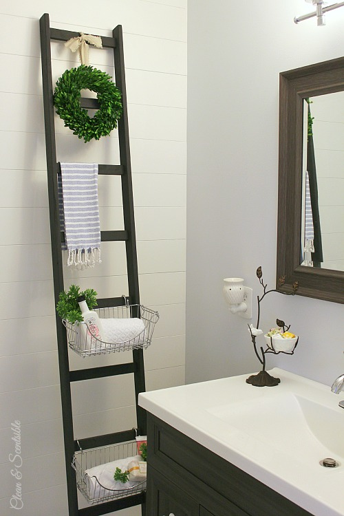 Diy storage ladder clean and scentsible love the look of this diy ladder such a great way to add some extra solutioingenieria Images