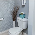 Awesome tips to REALLY get your toilet cleaned and disinfected!
