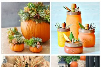 Favorite Fall Decor Ideas