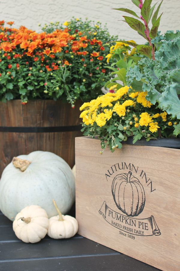 Beautiful ways to decorate with pumpkins for simple fall decor.