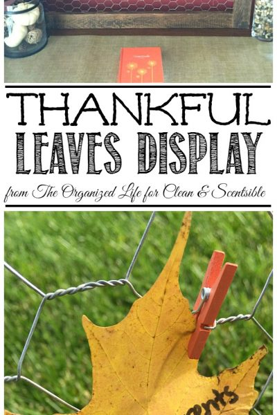 """Thankful Leaves"" Display"