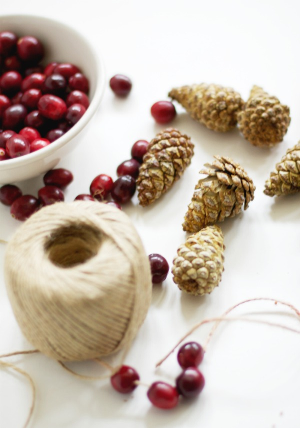 Beautiful bleached pine cone and cranberry garland. Perfect for your Christmas decorating or winter decor.