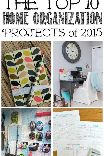 Top 10 Organization Ideas of 2015
