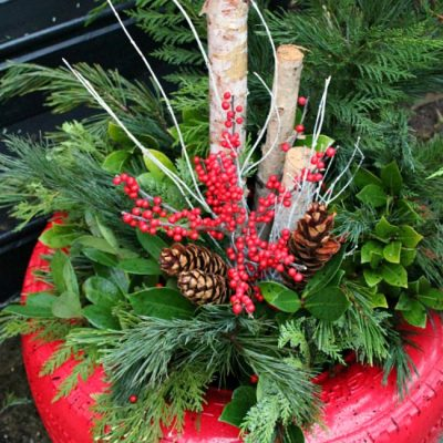 Painted recycled tire used for a beautiful fresh greens Christmas planter.