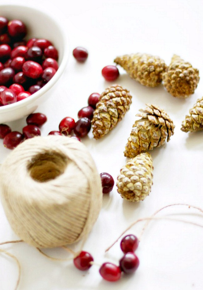 Bleached pinecones and cranberries for a Christmas garland.