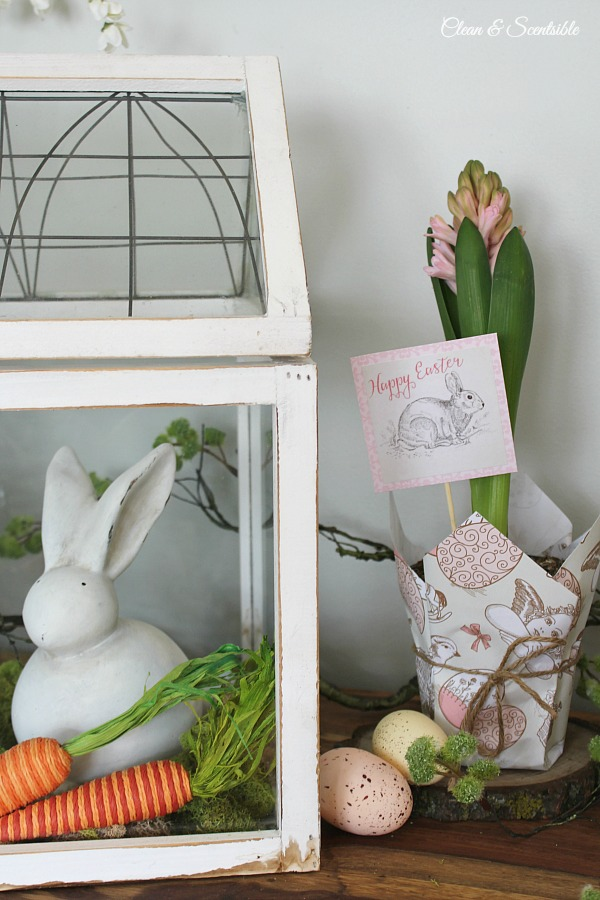 Easter planter clean and scentsible this cute easter planter would make a cute hostess gift or could be used in a negle