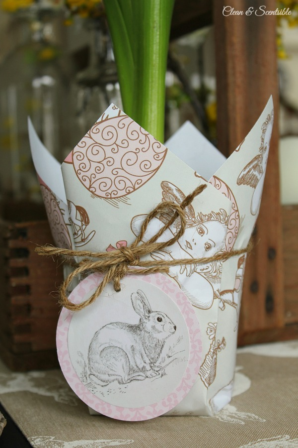 Easter planter clean and scentsible this cute easter planter would make a cute hostess gift or could be used in a negle Images