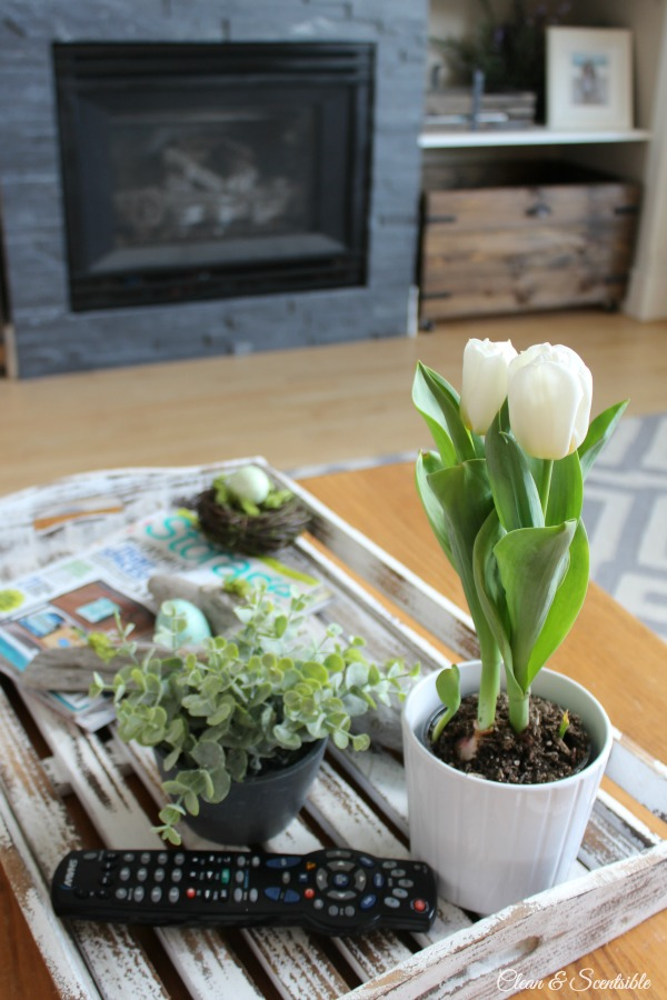 Living Room Spring Home Tour 5