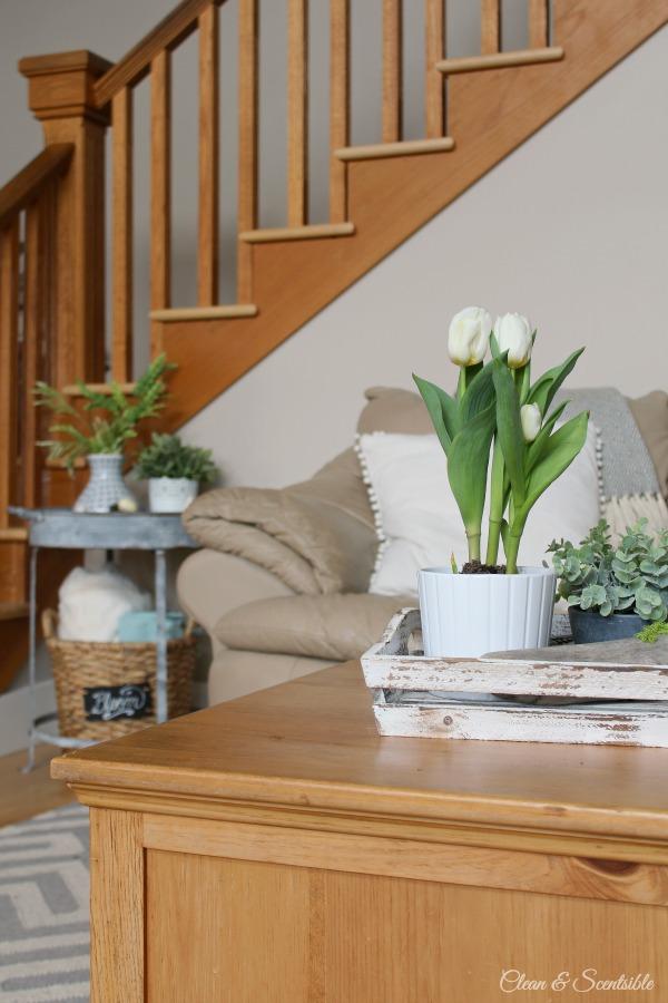 Spring Living Room 4