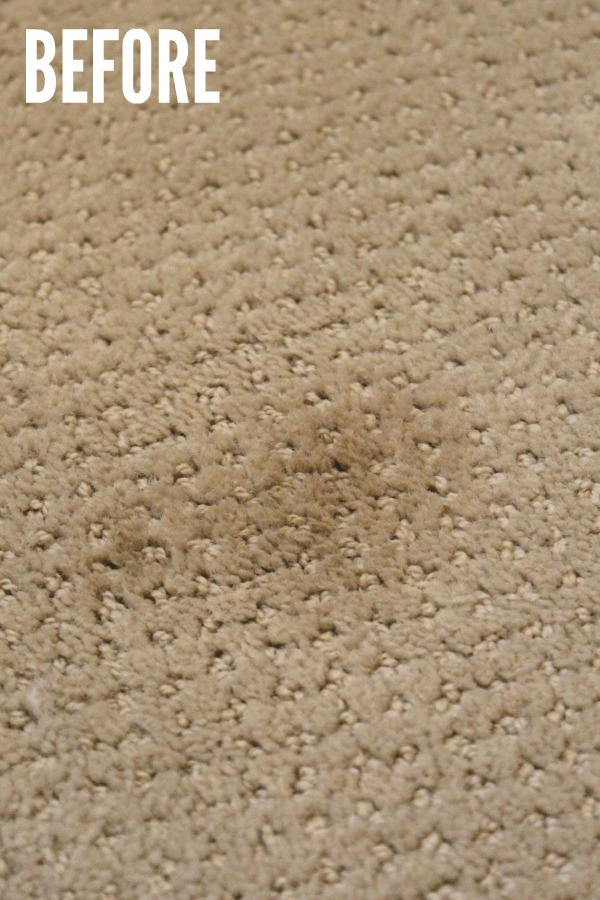 How To Get Rid Of Stains On Carpet Two Birds Home