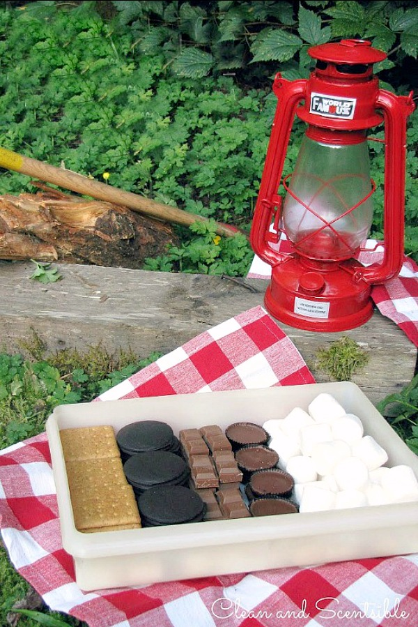 Place various cookies and chocolates in an airtight container for a fun variety of camping s'mores! Marshmallows can be temporarily stored here too but can make the cookies go soft if stored too long.
