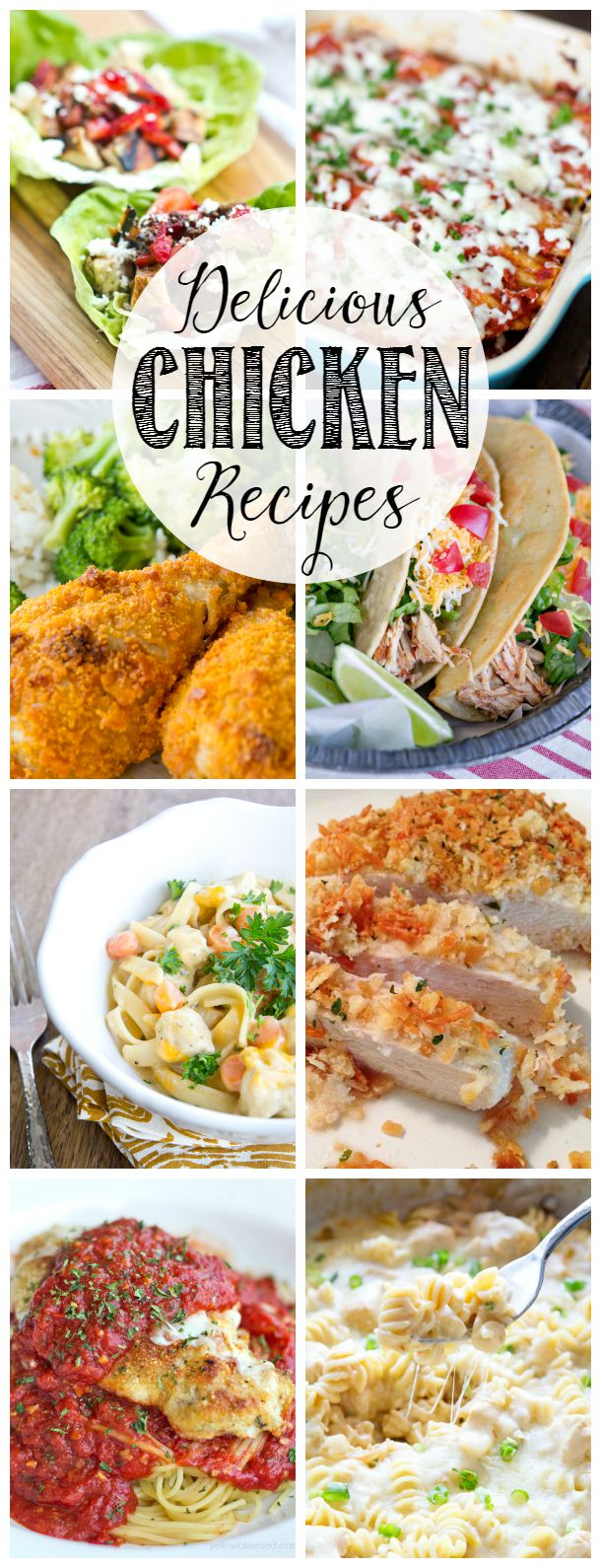 Collection of tasty chicken recipes.